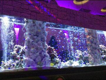 140330_restaurant01.jpg