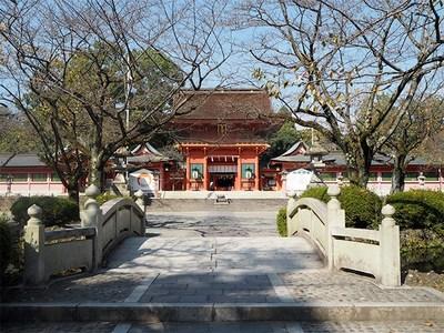 151109_fuji02.jpg