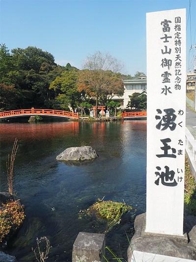 151109_fuji04.jpg