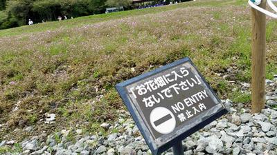 160523_fuji01.jpg