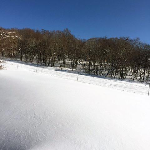 170116_ski01.jpg