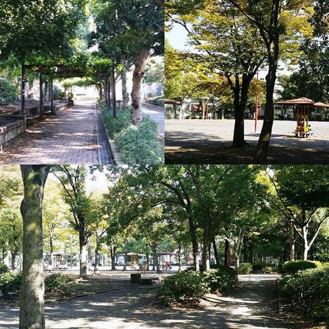 170127_tachibana01.jpg