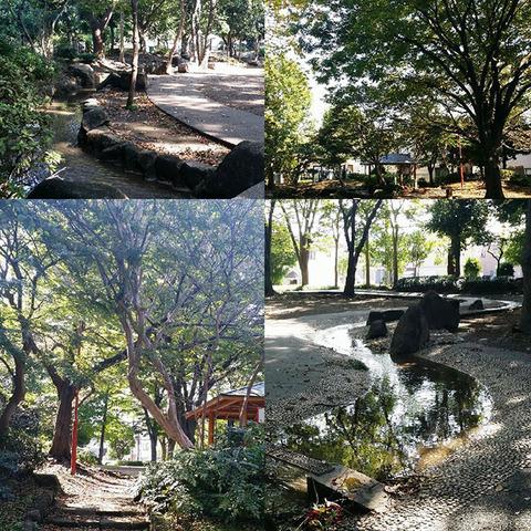 170127_tachibana02.jpg