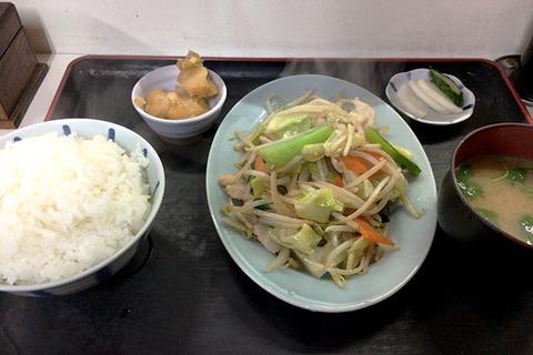 180125_shiragiku03.jpg