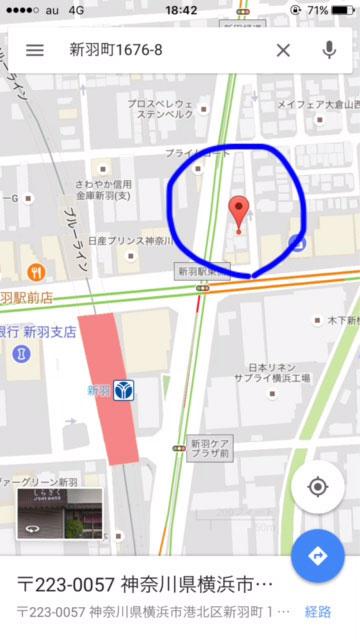 180125_shiragiku06.jpg