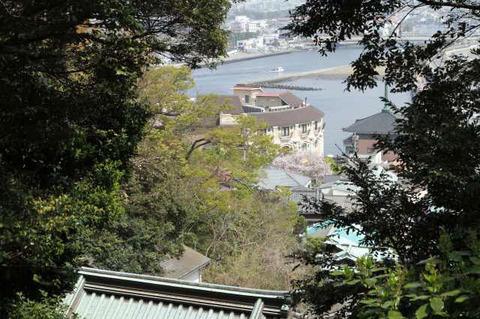 180409_enoshima05.jpg