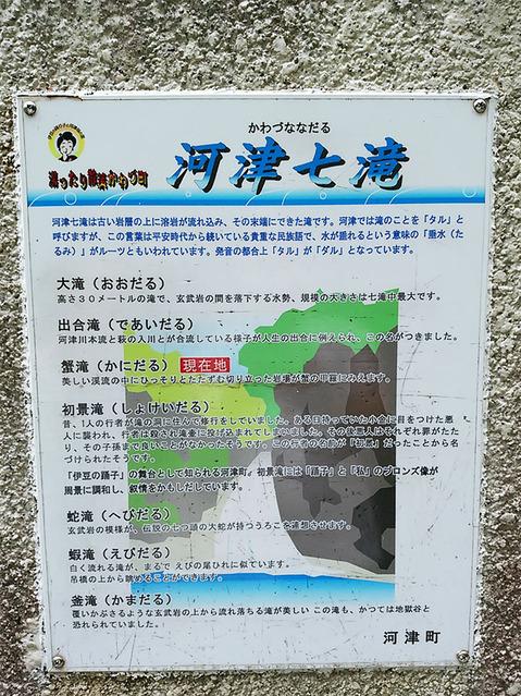 180507_kawazu02.jpg