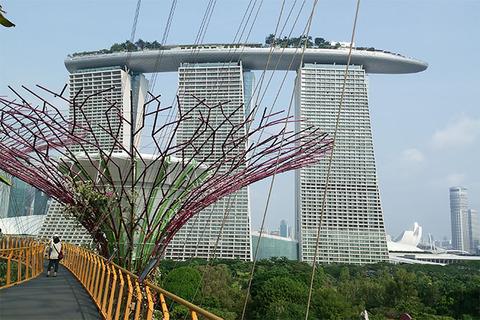 180910_singapore03.jpg