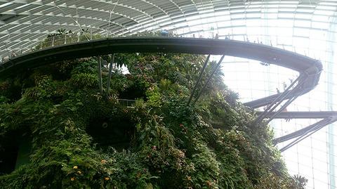 180910_singapore04.jpg