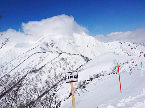 190322_snow04.jpg
