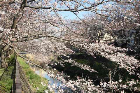 190415_at-kohoku02.jpg