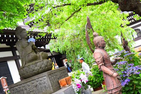 190704_kohoku05.jpg