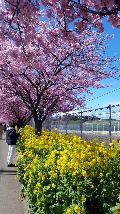 200301_us-nakahara03.jpg