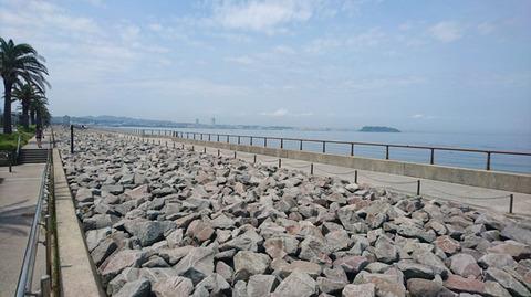 200515_nakahara02.jpg