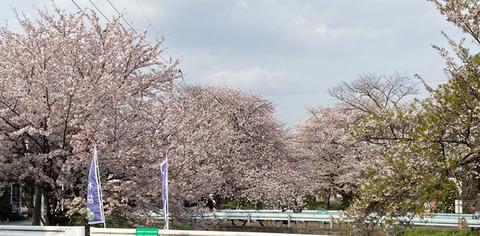 210408_tsuzuki01.jpg