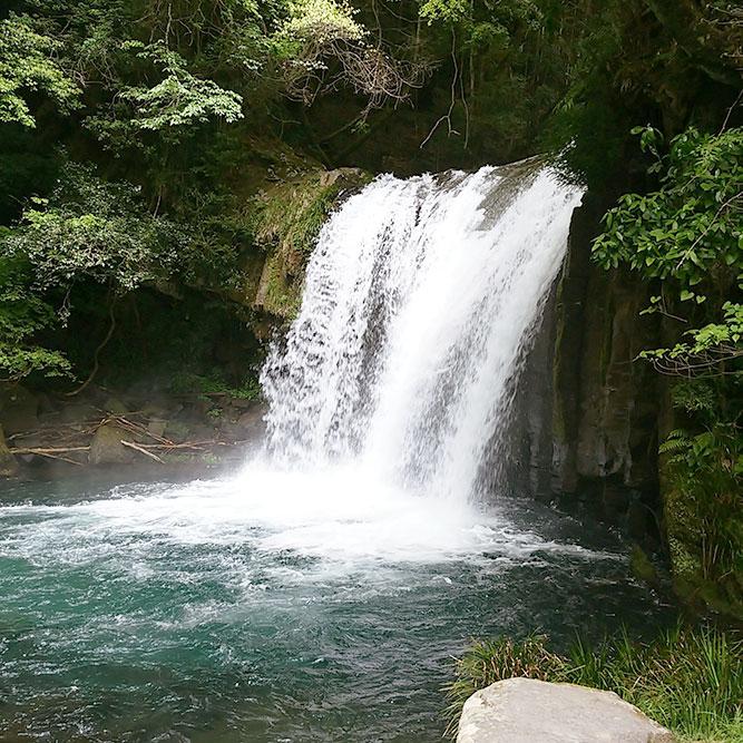 伊豆・河津七滝がオススメです!
