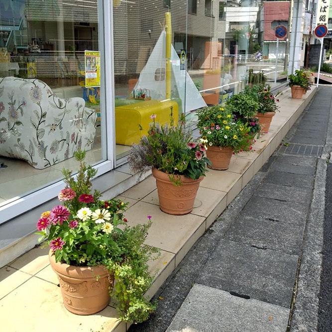 自慢の花壇です!